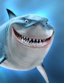 Фреди Торрес прыгает в резервуар с акулами