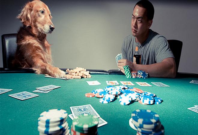 Принципы известных и успешных игроков в покер
